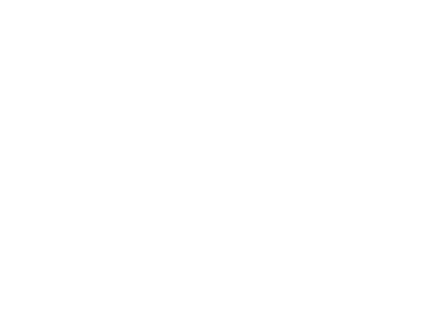 logo auto connecte